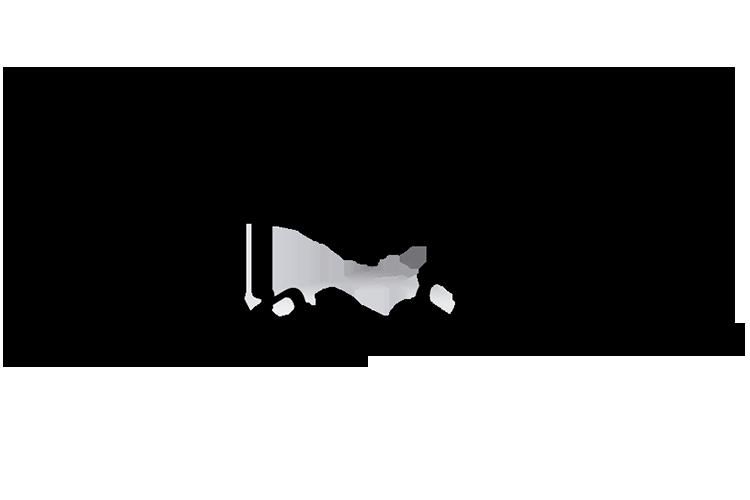 Tierra Media Logo